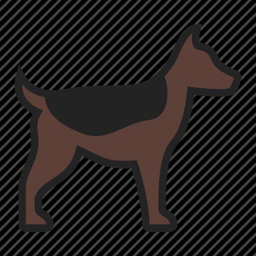 dog, pet, puppy icon
