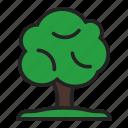 eco, nature, tree icon