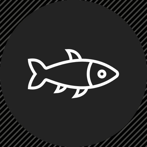 fish, fishing, seafood icon