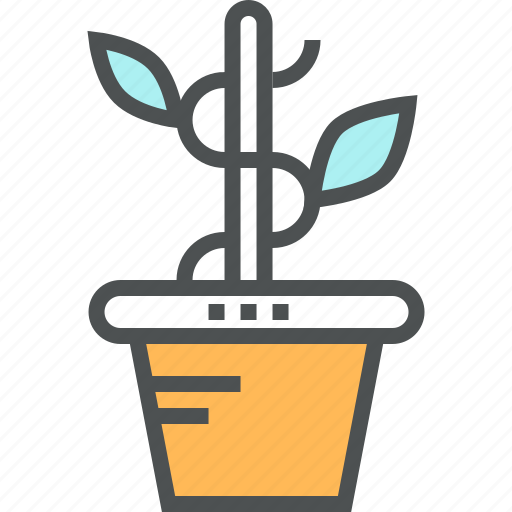 business, growth, growth plant, office, seo icon
