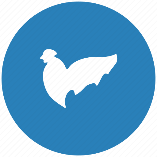 chicken, cock, fly, night, round icon