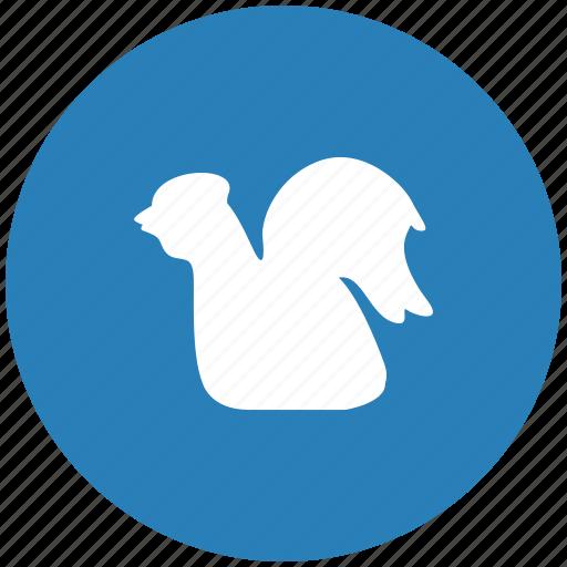 bird, chicken, cock, round, seat icon