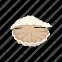 animal, clam, food, marine animal, mollusc, seafood, seashell icon