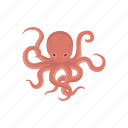 animal, mollusc, mollusk, octopus, sea creature, tentacles icon