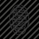 chiton, mollusc icon
