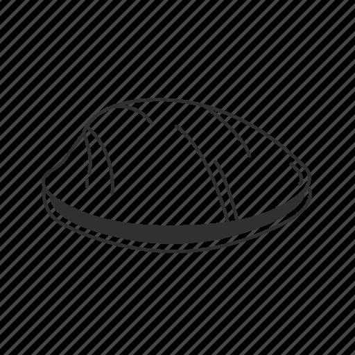 clam, closed clam, mollusc, shell icon