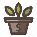 business, flower, investment, money, pot, vase icon