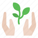 care, growth, hands, tree icon