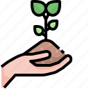 plant, tree, ecology, environment, hand, forest