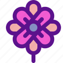 flower, gift3, lady icon