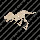 isometric, prehistoric, skeleton, museum, dinosaur, fossil, bone