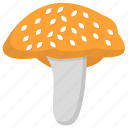 edible mushroom, fleshy fruit, ingredient, mushroom, toadstool, vegetable icon