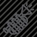 brass, horn, instrument, music, trumpet, tuba icon