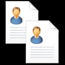 copy, curriculum vitae, documents, resume icon