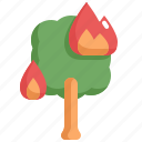 burn, climate change, disaster, fire, natural disaster, nature, tree icon