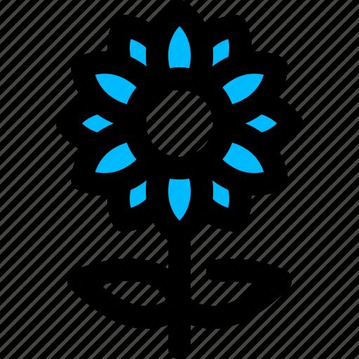 flower, garden, nature, sunflower icon