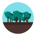 forest, jungle, tree, wood icon