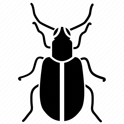beetle, creeping, insect, nature icon