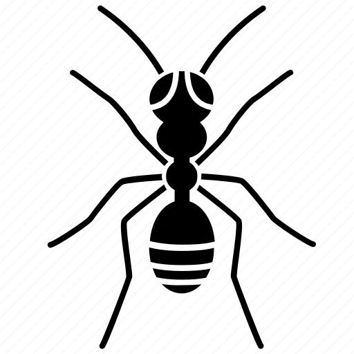 ant, creeping, insect, nature icon