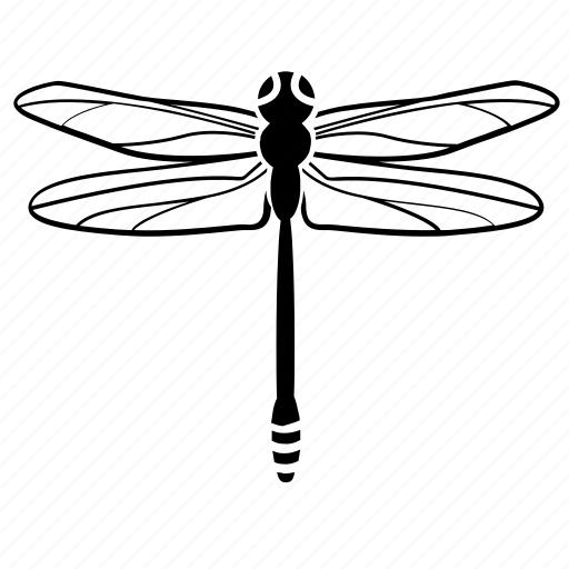 buzzing, dragonfly, fly, insect, nature icon