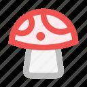 amanita, fly agaric, forest, fungus, mushroom, mushrooms