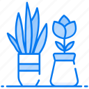 bushes, growing plant, natural plant, shrubs, wild plant