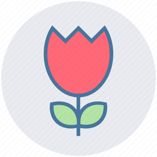 flower, forest, garden, nature, red rose, rose icon