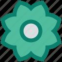 blossom, flower, forest, garden, nature, plant