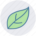 autumn, green, leaf, nature, park, plant icon