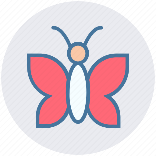 animal, butterfly, garden, insect, spring, wings icon