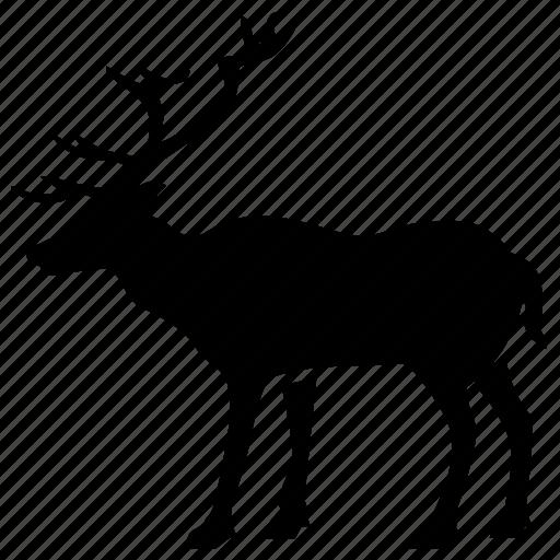 animal, dear icon