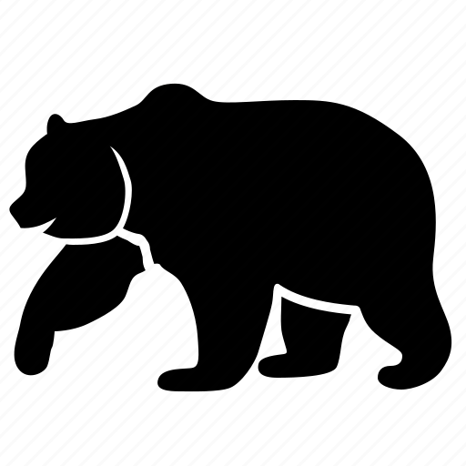 animal, bear icon