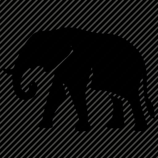 Animal, elephant icon - Download on Iconfinder on Iconfinder