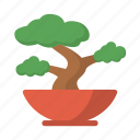bonsai, feng shui, plant, nature, pot, zen