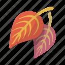 falling, leaf icon