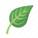 ecology, environment, leaf, nature icon