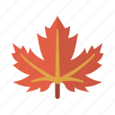 canada, leaf, maple, nature icon