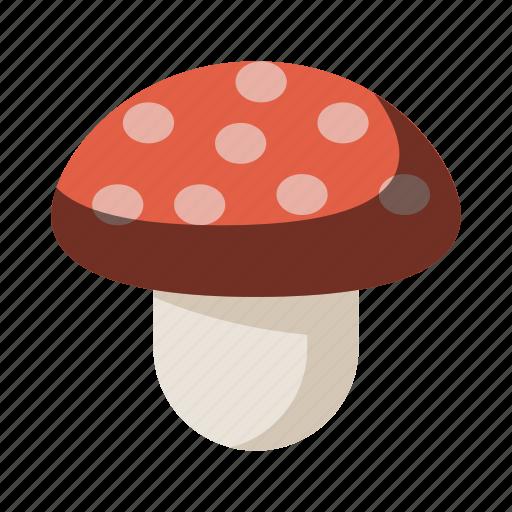 fungi, fungus, mushroom, psychadelics, shroom icon