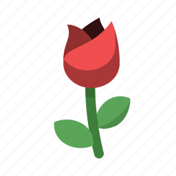 date, flower, gift, love, rose, thoughtful, valentines icon