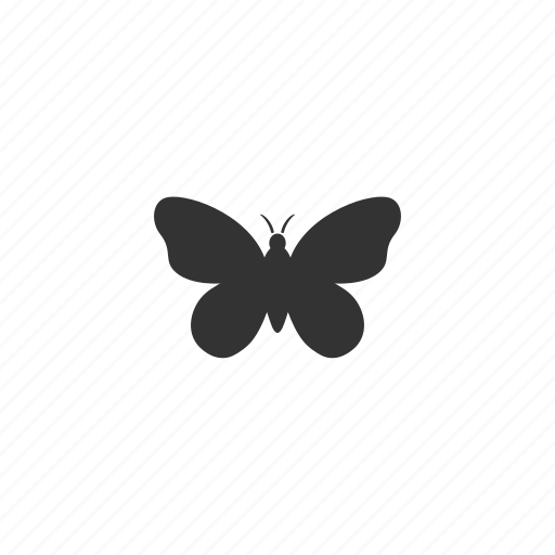 antennas, beauty, biology, butterfly, conservation, fly, illustration, insect, nature, organism, wings icon