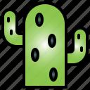 cactus, nature, plant, garden, desert