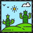 cactus, field, landscape, mountain, nature, outdoor, park