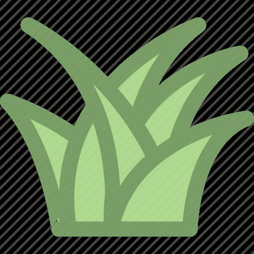 grass, nature, plant icon