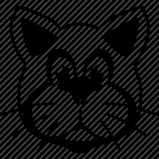 cat, head, kitty, pet, pussycat, tomcat, veterinary icon