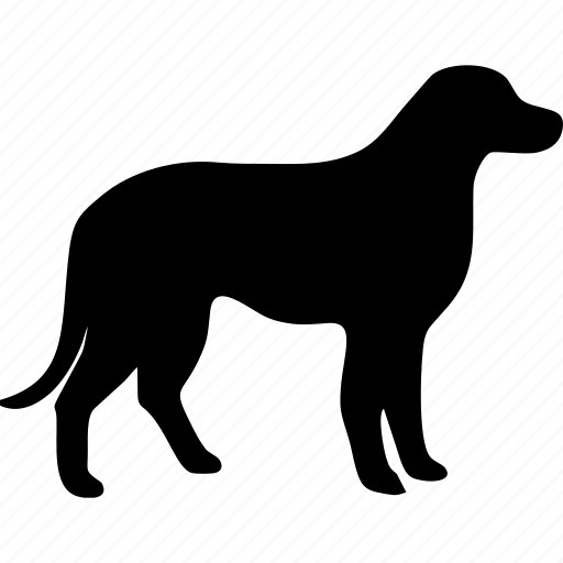 dog, dogs, pet, pets, puppy, vet, veterinary icon