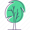 environment, nature, outdoors, park, sustainable, tree, trees icon icon
