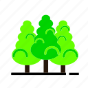 forest, green, nature, plant, spring, tree icon