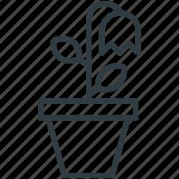 bell shaped, bellflower, bluebell bloom, flower, nature icon