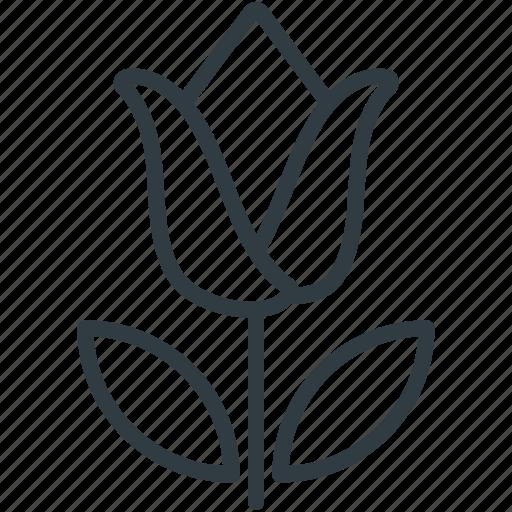 flower, pot plant, spring flower, tulip, tulip bud icon