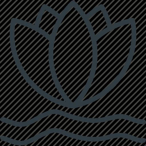 flower, lotus, lotus lily, lotus lily flower, natural icon